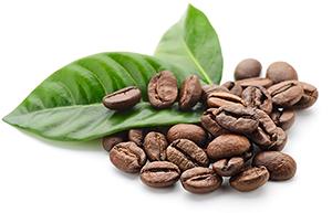 coffeum_miljö